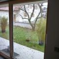Fenster_06