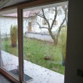 Fenster_07