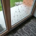 Fenster_08